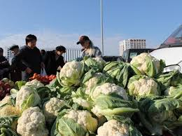 At the weekend in Ufa will host agricultural fair